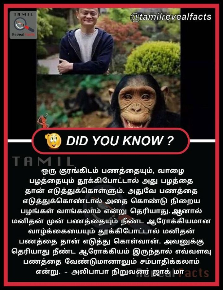 Tamil Reveal Facts On Twitter Alibaba Founder Jack Ma Telling A