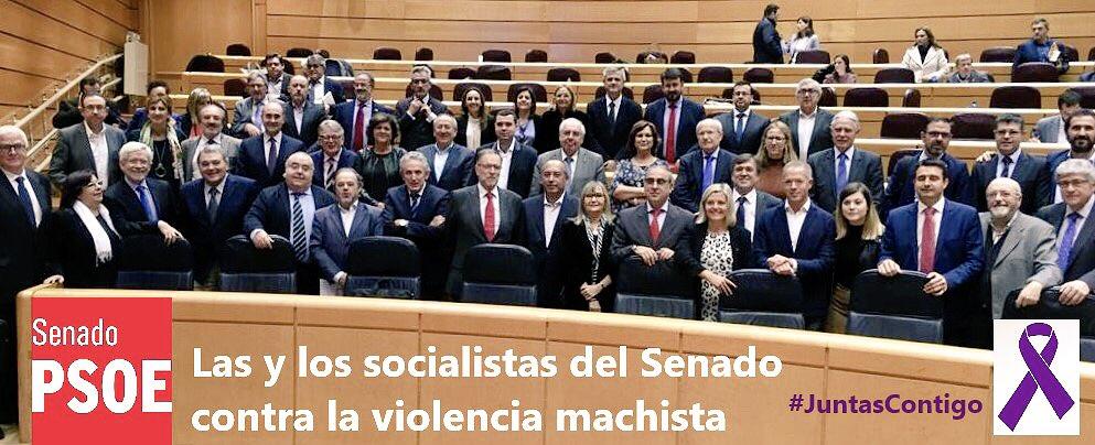 Las y los socialistas del #Senado contra la #ViolenciaMachista #25N #JuntasContigo