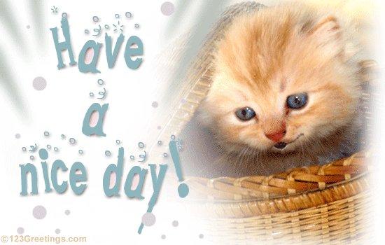 Добрый день на английском языке открытки
