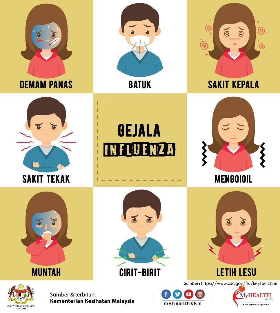 Image result for influenza kkm""