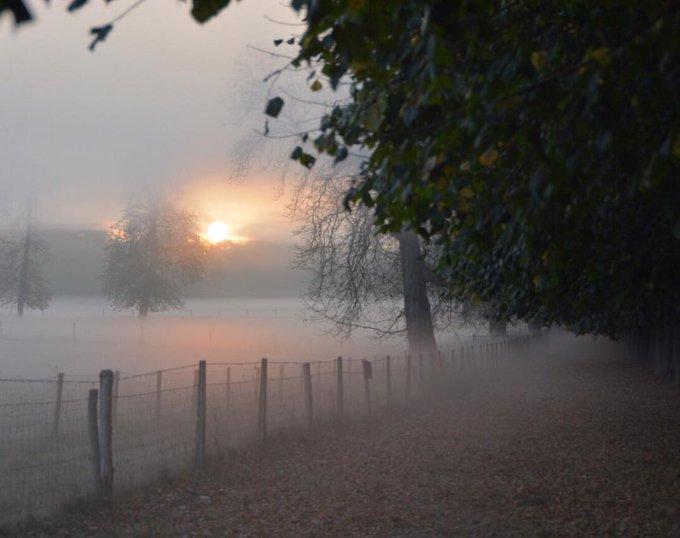 #jeudiphoto Du brouillard ?? Seulement du charme en plus dans les Yvelines. © coversailles Photo