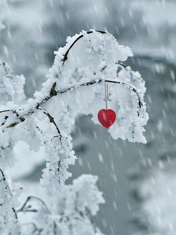 зима в сердце фото место мебели предлагает