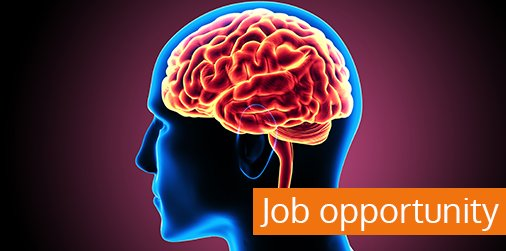 Brains Of Young People With Severe >> Westmead Institute On Twitter Jobopportunity Our Brain Dynamics
