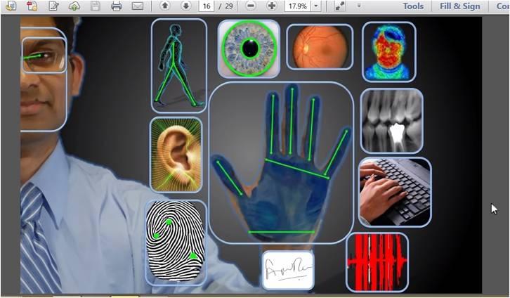 download die anatomie digitaler geschäftsmodelle
