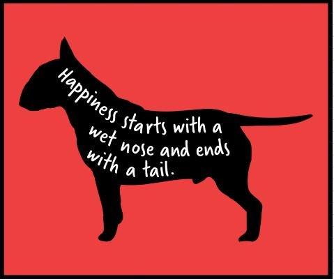 LIKE if you agree! #BullTerrier #DogLife #Friyay  https:// buff.ly/2M26Cv2  &nbsp;  <br>http://pic.twitter.com/k9HwPj0mAU