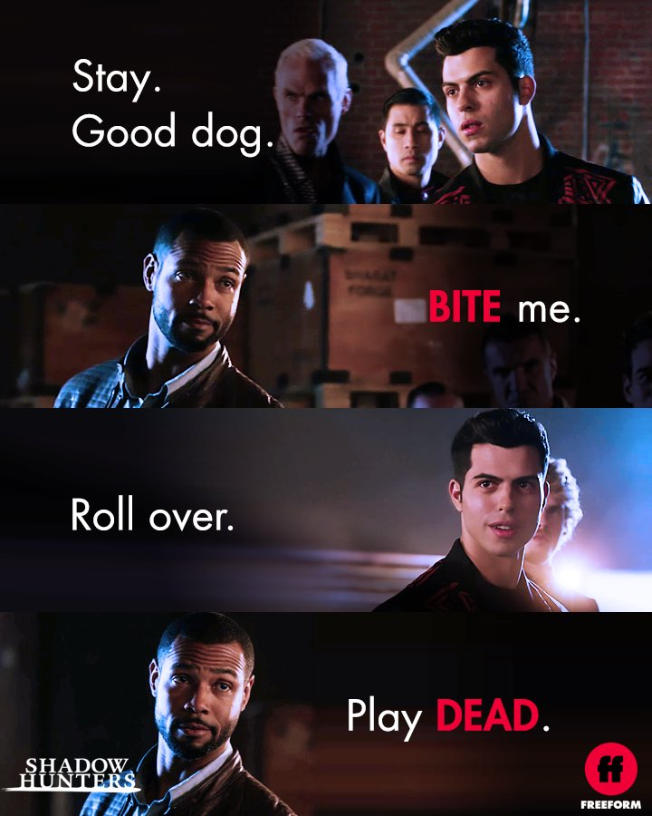 Best play on words goes to ... #Shadowhunters