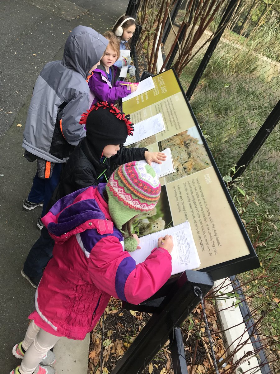 2nd grade had a delightful trip to the zoo. <a target='_blank' href='http://twitter.com/TaylorPTAtalk'>@TaylorPTAtalk</a> <a target='_blank' href='http://twitter.com/HaroldPell'>@HaroldPell</a> <a target='_blank' href='http://twitter.com/APSVirginia'>@APSVirginia</a> <a target='_blank' href='http://twitter.com/fieldtripsoc'>@fieldtripsoc</a> <a target='_blank' href='http://twitter.com/secondgrade'>@secondgrade</a>. <a target='_blank' href='http://search.twitter.com/search?q=ThankYou'><a target='_blank' href='https://twitter.com/hashtag/ThankYou?src=hash'>#ThankYou</a></a> to all of our parent <a target='_blank' href='http://search.twitter.com/search?q=volunteers'><a target='_blank' href='https://twitter.com/hashtag/volunteers?src=hash'>#volunteers</a></a> <a target='_blank' href='http://search.twitter.com/search?q=APSGetInvolved'><a target='_blank' href='https://twitter.com/hashtag/APSGetInvolved?src=hash'>#APSGetInvolved</a></a> <a target='_blank' href='https://t.co/q37c3HKEDS'>https://t.co/q37c3HKEDS</a>