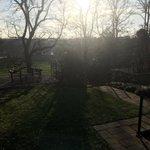 How good is this #autumnal weather?!? View into our garden at #Preston #fwp #officegarden #autumndays #dooropen