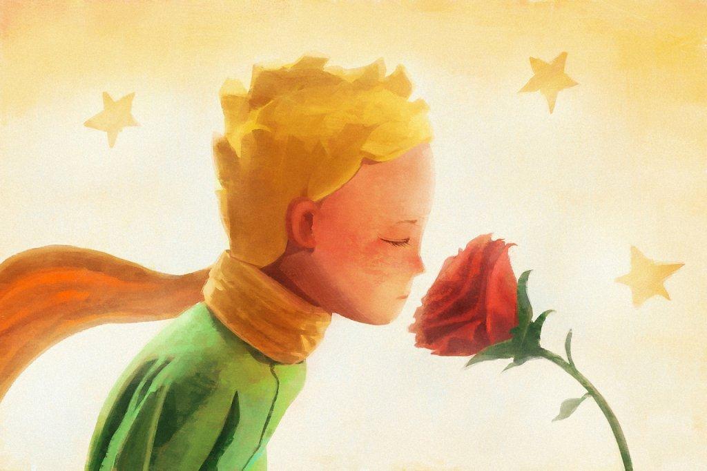 Картинки маленький принц и роза