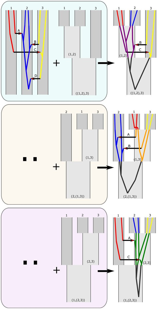 Phylogeny Estimation by Integration over Isolation with Migration Models academic.oup.com/mbe/article/35…