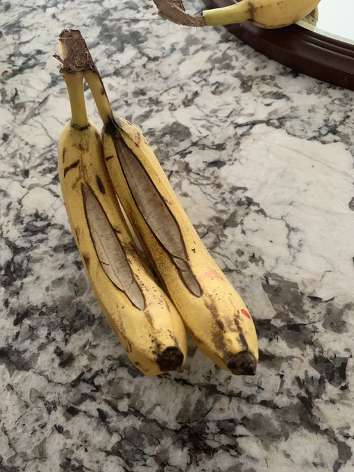 Can someone please explain to me what this is and why it happened to my bananas? Thank you https://t