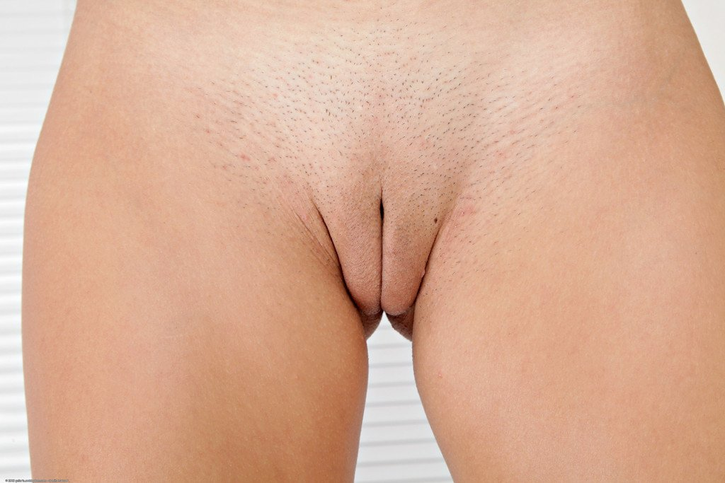 Shaved vulva brazilian picture ass free porn