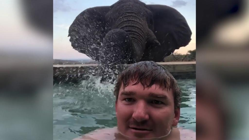 Sudafrica, nel resort una piscina unica: a bordo v...