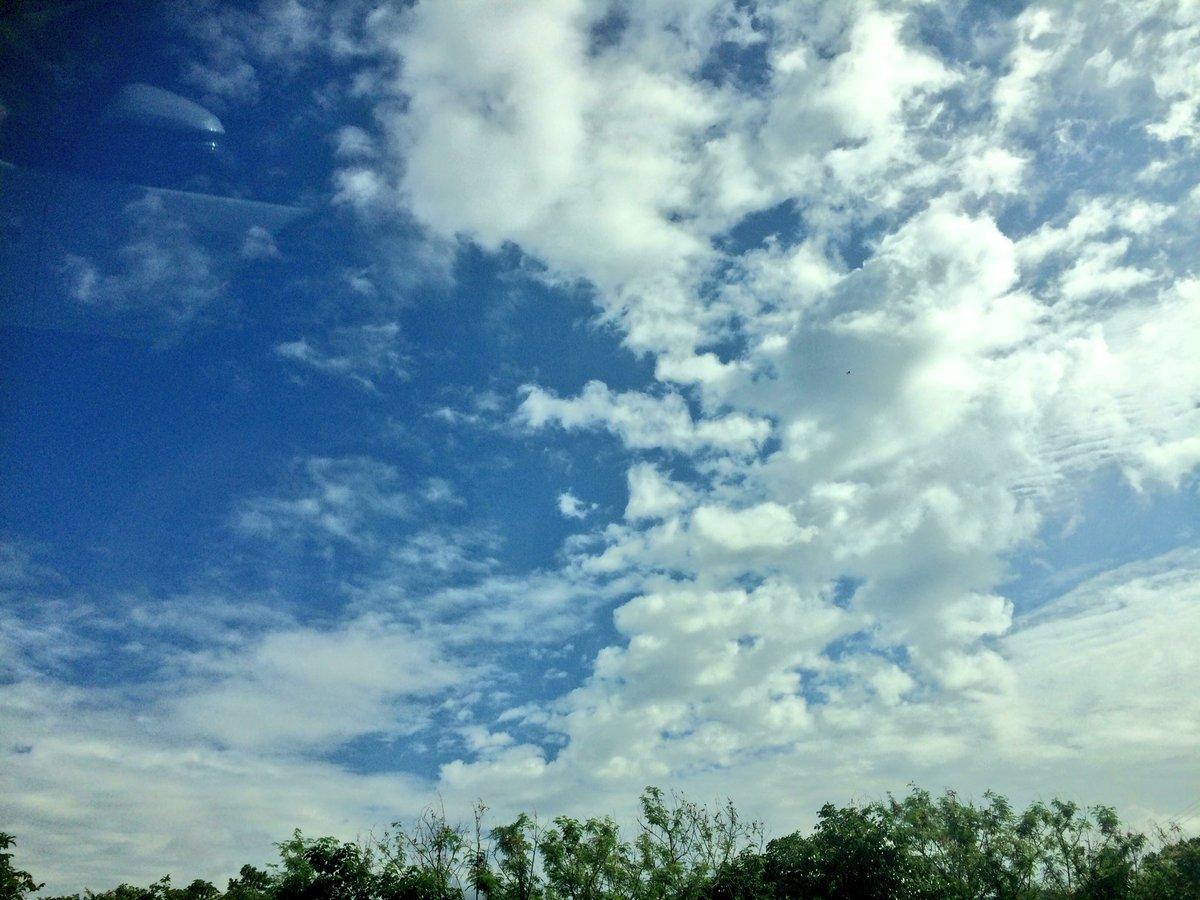 @HAZZIE3 飛行機が着陸をやり直す様な朝の土砂降りが嘘みたいに、北に来たら晴れてる♪(≧∀≦) https://t.co/JD5qSZIjl4