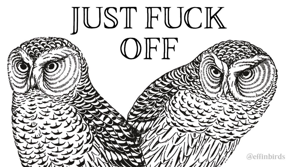 Effin' Birds on Twitter:
