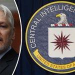 julian assange Twitter Photo