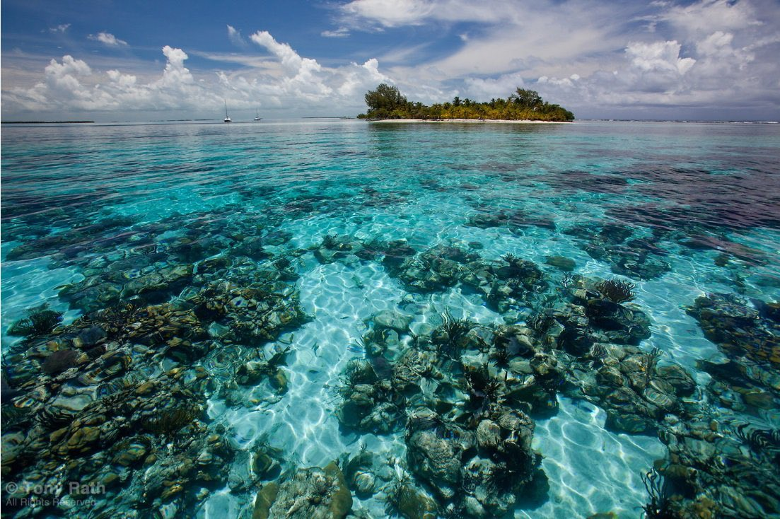 Welcome to #CleanSeas, Belize! Home to the second-largest barrier reef in the world, 🇧🇿 has pledged to ban single-use plastic items, as well as styrofoam by April 2019.  Here's how other countries in the region are working to #BeatPlasticPollution: https://t.co/HXn0Rw4HNE