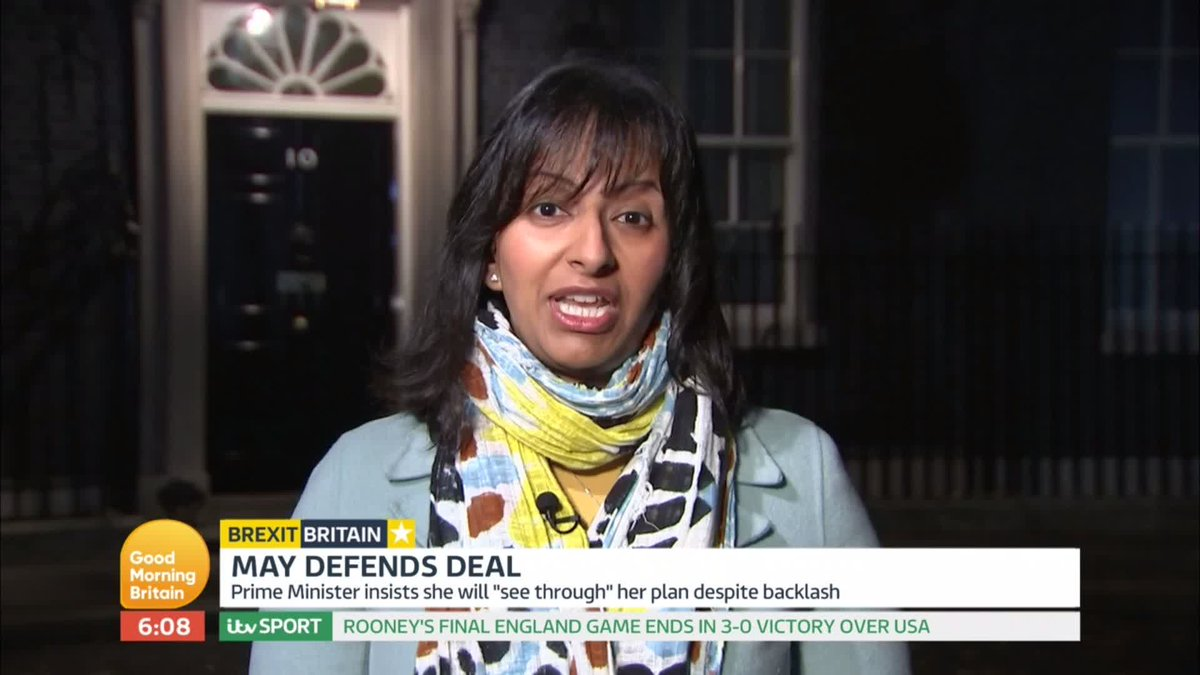 The PM insists she will see through her Brexit plan, despite facing numerous resignations. Brexiteer Jacob Rees-Mogg submitted a letter of no-confidence yesterday, meaning Theresa May could face a leadership challenge. @ranvir01