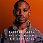 buffalo park Twitter Photo