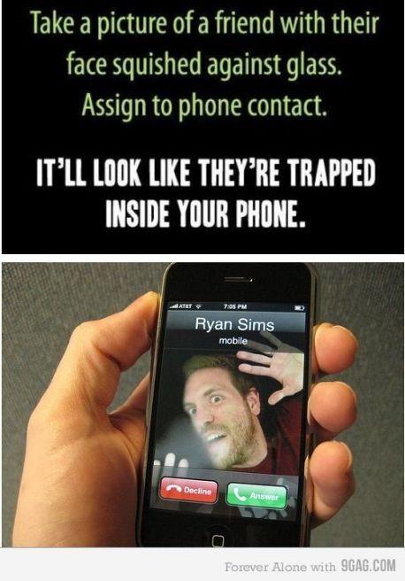 pixelshrink photo