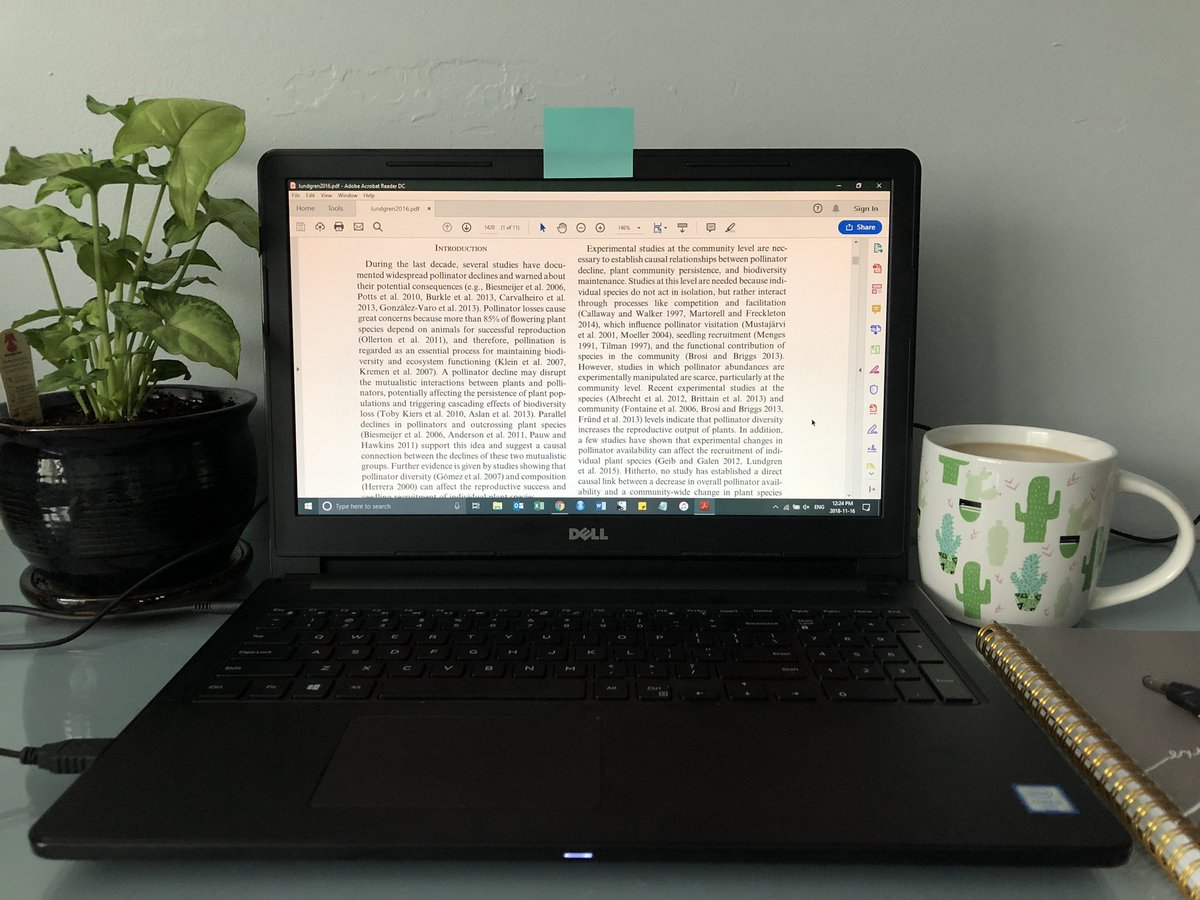 ebook oben