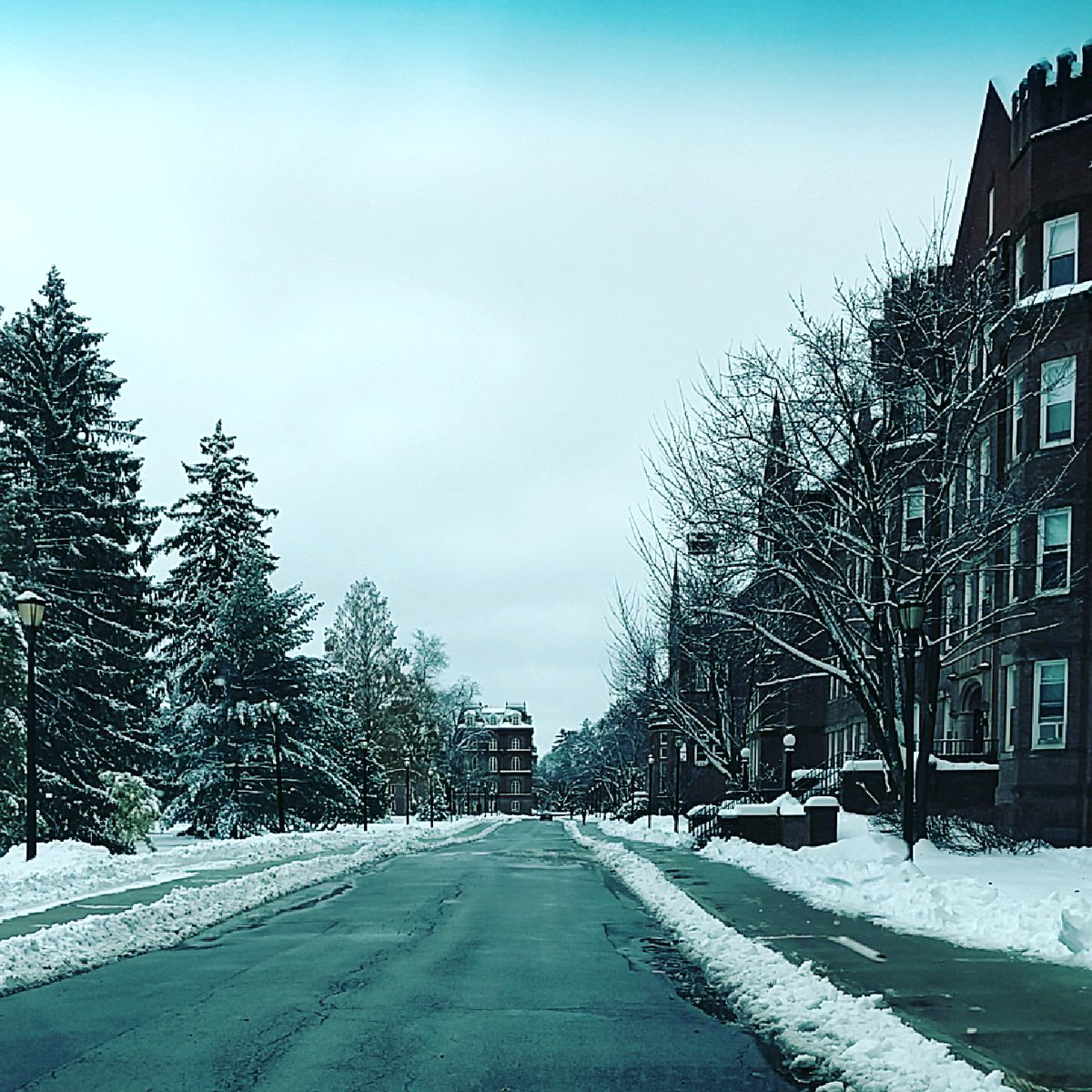 A snow covered @Vassar this morning