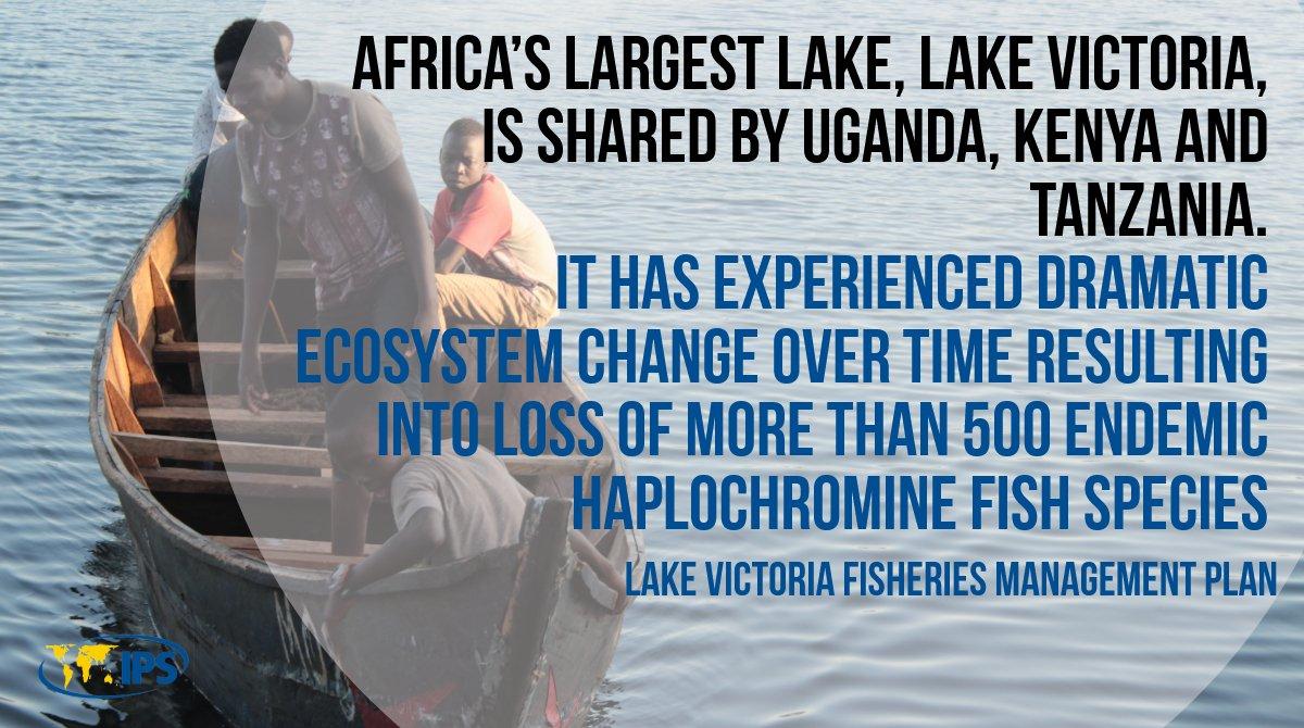 Hookup kenya uganda tanzania