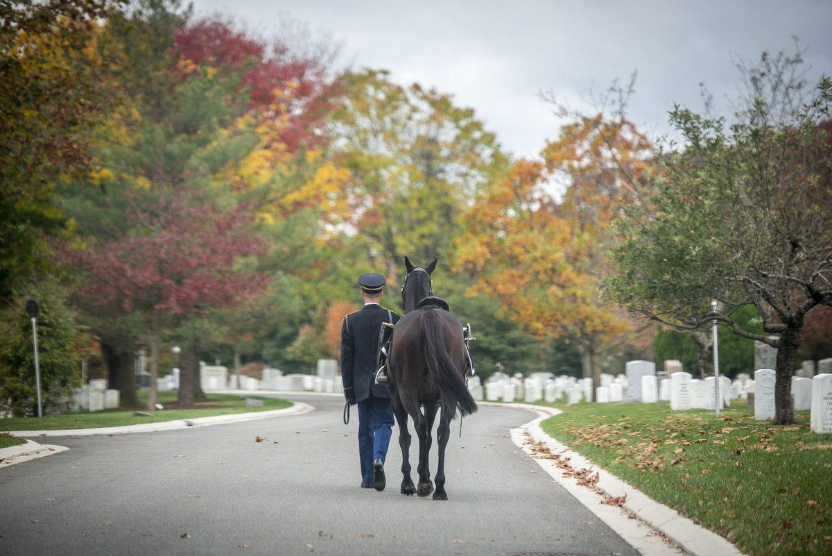 Service members from every American conflict rest at Arlington National Cemetery. Their headstones tell the story of our nation and symbolize love of country. Today and everyday we #HonorThem. (@USArmy photo by Elizabeth Fraser, Arlington National Cemetery)