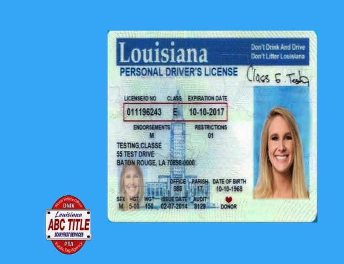 class e drivers license louisiana