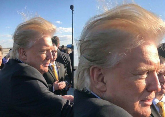RT @thistallawkgirl: Donald Trump is terrified of going bald, so you probably shouldn't like/retweet this https://t.co/j2EmQePERS