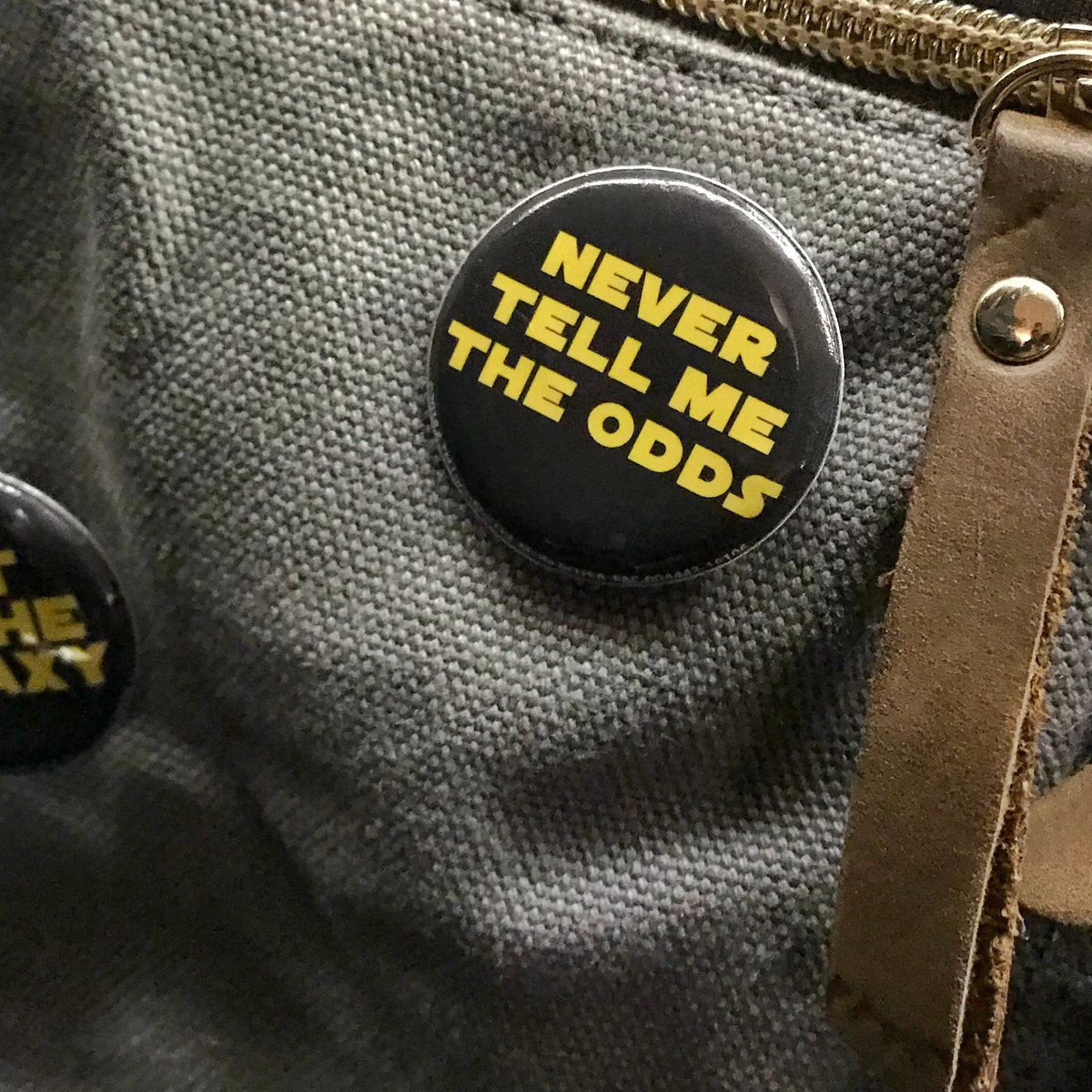 @frankpallotta Nice woman on the subway let me take a picture of the pin on her backpack 💯