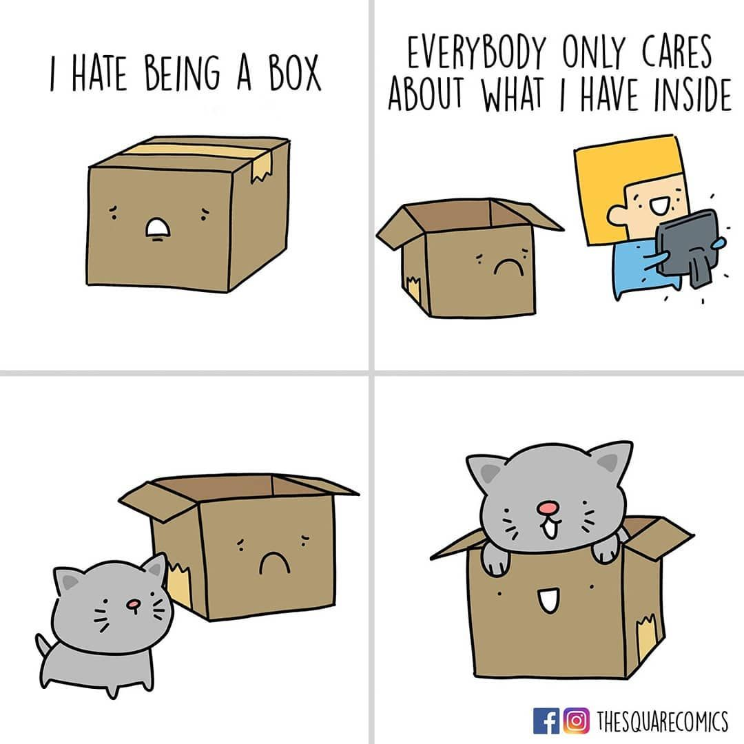 Dont worry, catto cares about you. By thesquarecomics | IG