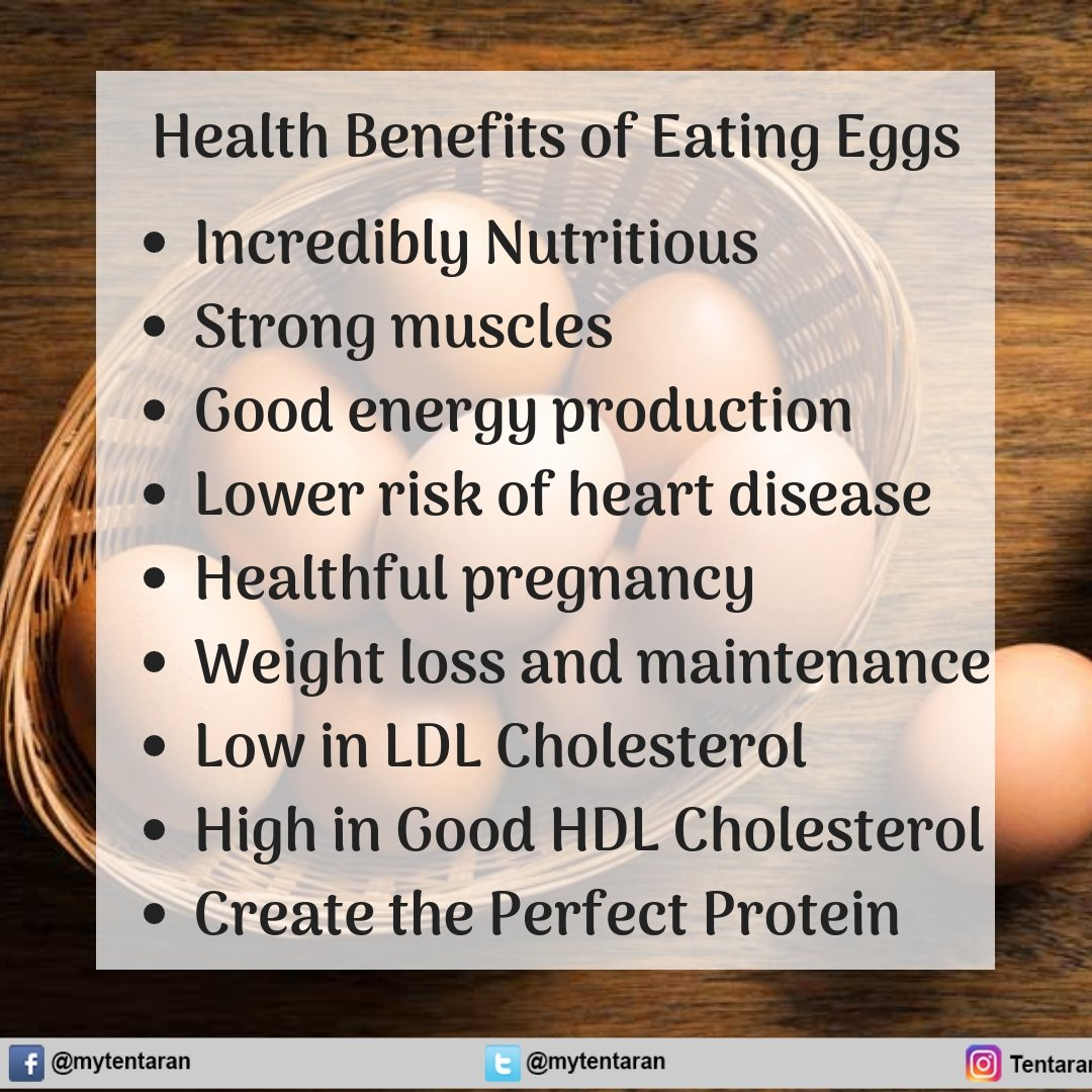 Health Benefits of Eating Eggs  . ..   check benefits of amla -  https:// goo.gl/fZUJnt  &nbsp;   . #DailyHealthTips #EatClean #EatLocal #FitFood #GlutenFree #HealthyEating #HealthyRecipes #Nutrition #Paleo #Vegan #GetHealthy #HealthyLife #Health #MentalHealth #Healthcare #Fitness #Life<br>http://pic.twitter.com/Hr0EccjH2e