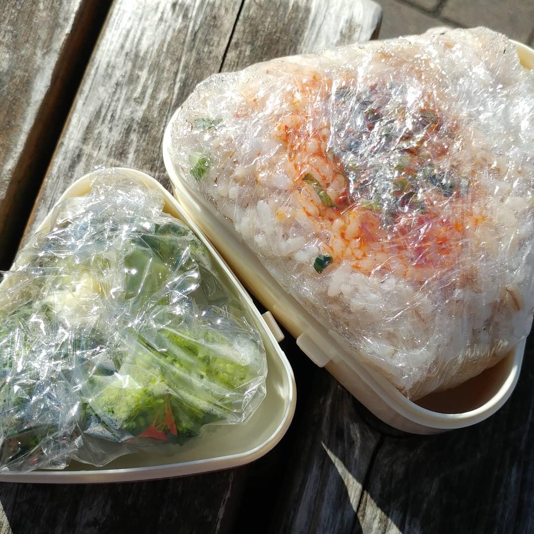 test ツイッターメディア - 今日のお昼は #おにぎり弁当 ?? #もち麦ご飯おにぎり とブロッコリー   #セリア の #おにぎりケース に、ラップ敷いてご飯入れて蓋したら、おにぎりの出来上がり??にぎってない(笑)  #手作り弁当 #お弁当ランチ #おにぎりランチ #もち麦ダイエット #もち麦の食感が好き #もち麦ごはん https://t.co/IvLHNb9pZv