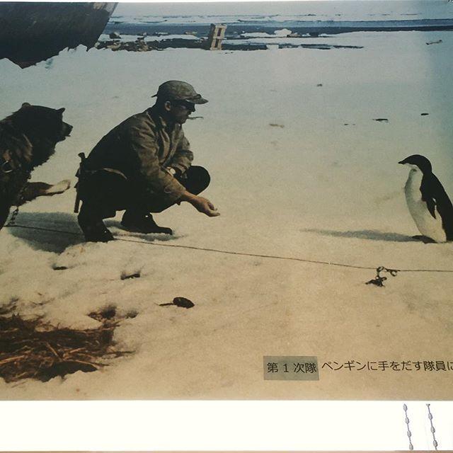 「ペンギンに手を出す隊員にお手しようとするカラフト犬」。