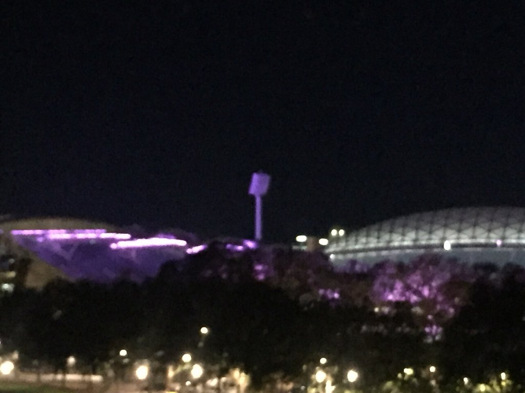 RT @meg_bater: Adelaide Oval #lightitpurple for #WorldPrematurityDay #ACNN https://t.co/y7Oj4Fss4P