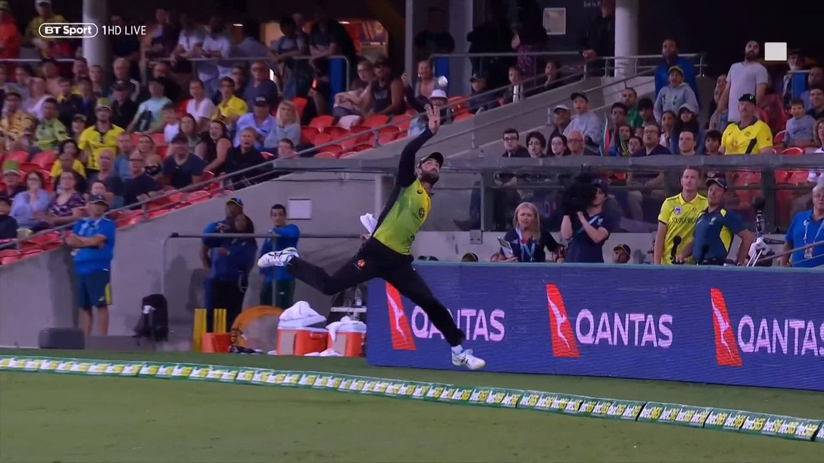 RT @btsportcricket: What a catch! 😍  That is magnificent from Glenn Maxwell!  Outstanding awareness 👏 https://t.co/pZ7XuKQcIE