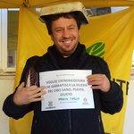 Image for the Tweet beginning: D'accordo,la foto non emana credibilità.