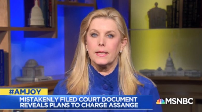 .@CYNTHIAALKSNE: #Assange could be indicted under the Espionage Act for the stealing of the secrets. Or he could be indicted for actually hacking into the election. Once we know that we&#39;ll know a lot more about what #Mueller&#39;s thinking #AMJoy<br>http://pic.twitter.com/26VCKzIVuP