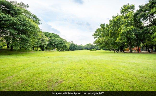 Delhi resident associations to get 1.8 lakh per acre for upkeep of parks https://t.co/v6d7a6ve2i