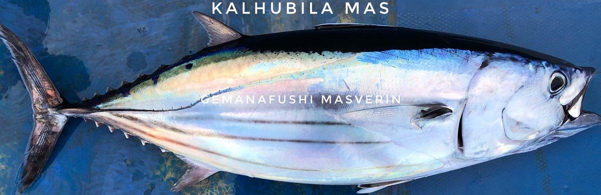 Moi Fish English Name