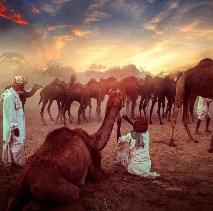 इस मिट्टी की की बात ही कुछ और हैं ... #राजस्थानीसंस्कृति #SundayThoughts Photo