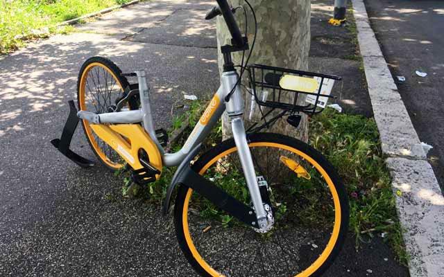 """I """"cadaveri"""" di bicicletta che giacciono per le vie di Roma,resti di un bikesharing fallito,provano ancora una volta quanto i Romani ,o chi frequenta la nostra città, considerino di qualcun altro la cosa pubblica. Finché non cambieremo questo,meriteremo il peggio. #sensocivico 🚲"""