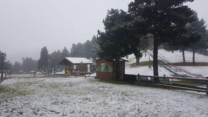 Bon dia i bon diumenge des de la #cota 2000 de #Naturlandia!! ❄️🌲❄️ #neu #snow #fred #andorralovers #visitandorra ##tardoranaturlandia #natura #muntanyes #quebonic