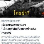 #ไทยพีบีเอส Twitter Photo