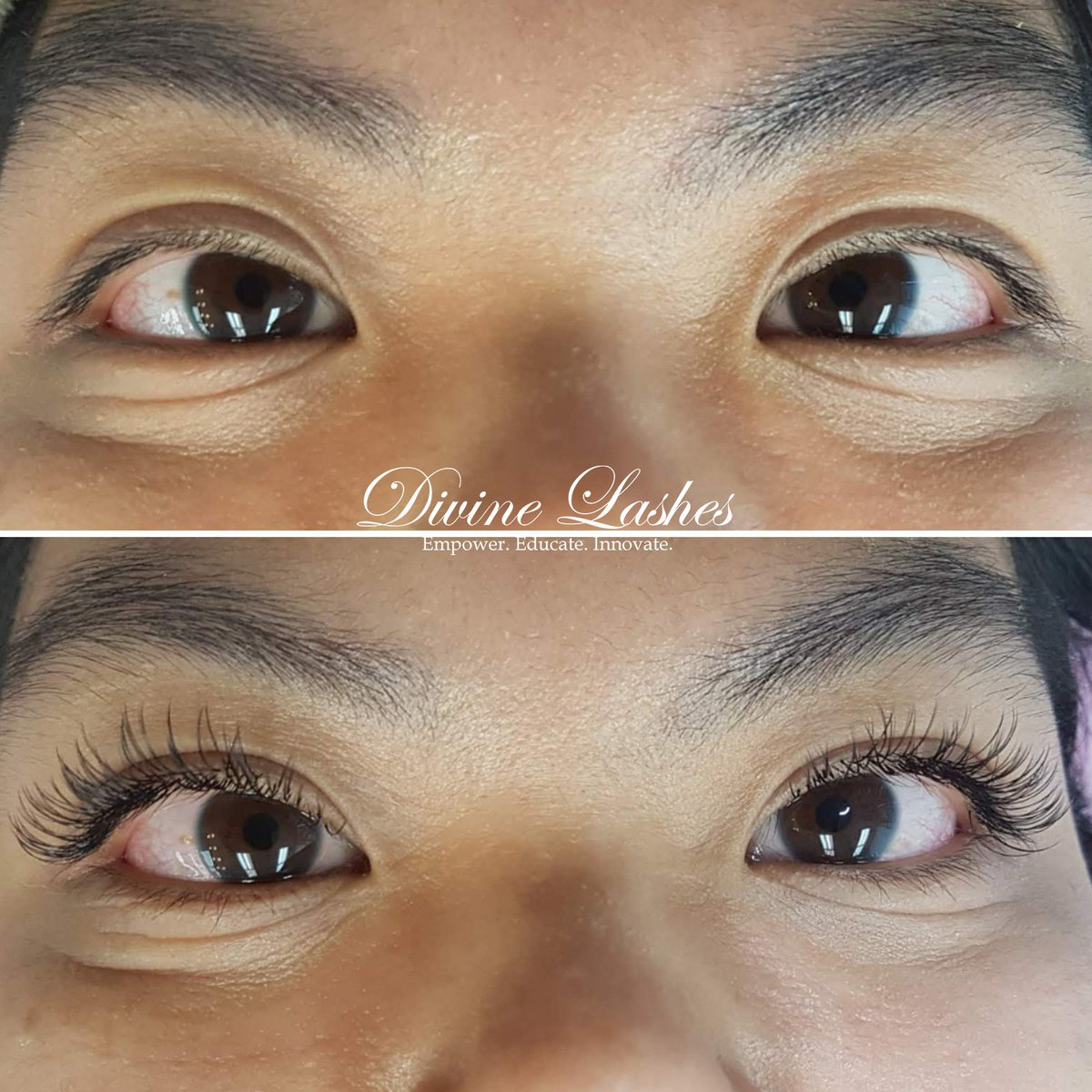 d3502f95eb9 Divine Lashes on Twitter: