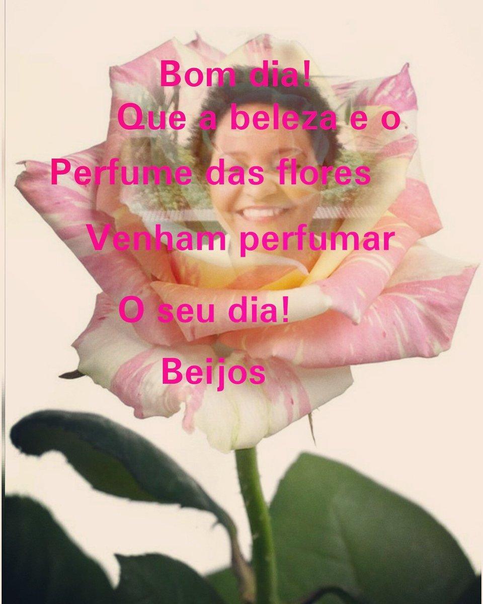 Fátima Moraes Silva On Twitter Bom Dia Meu Amor Meu Rei