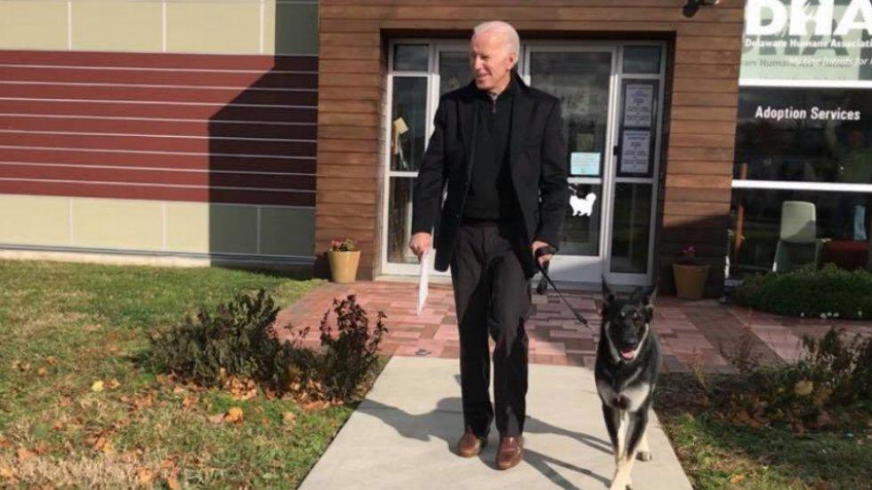 Bidens adopt a dog https://t.co/Pl65hOcnqH https://t.co/DcmrWwkebP