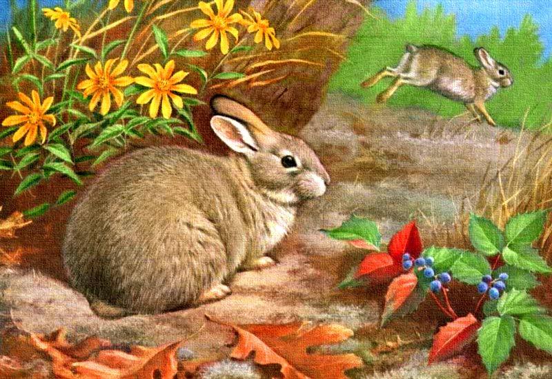 Картинки зайца в лесу для детей
