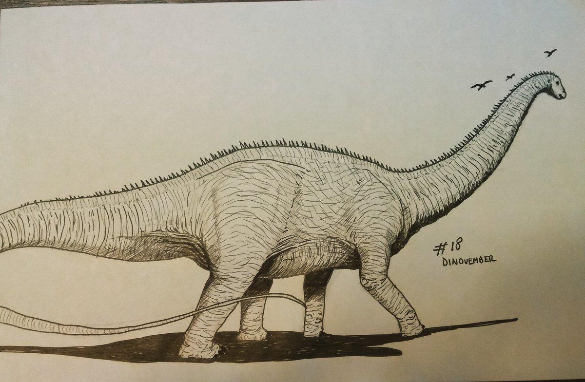 apatosaurus vs diplodocus - HD1200×784